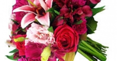 Para minha querida esposa, minha filha e a todas as mulheres neste 08 de março!